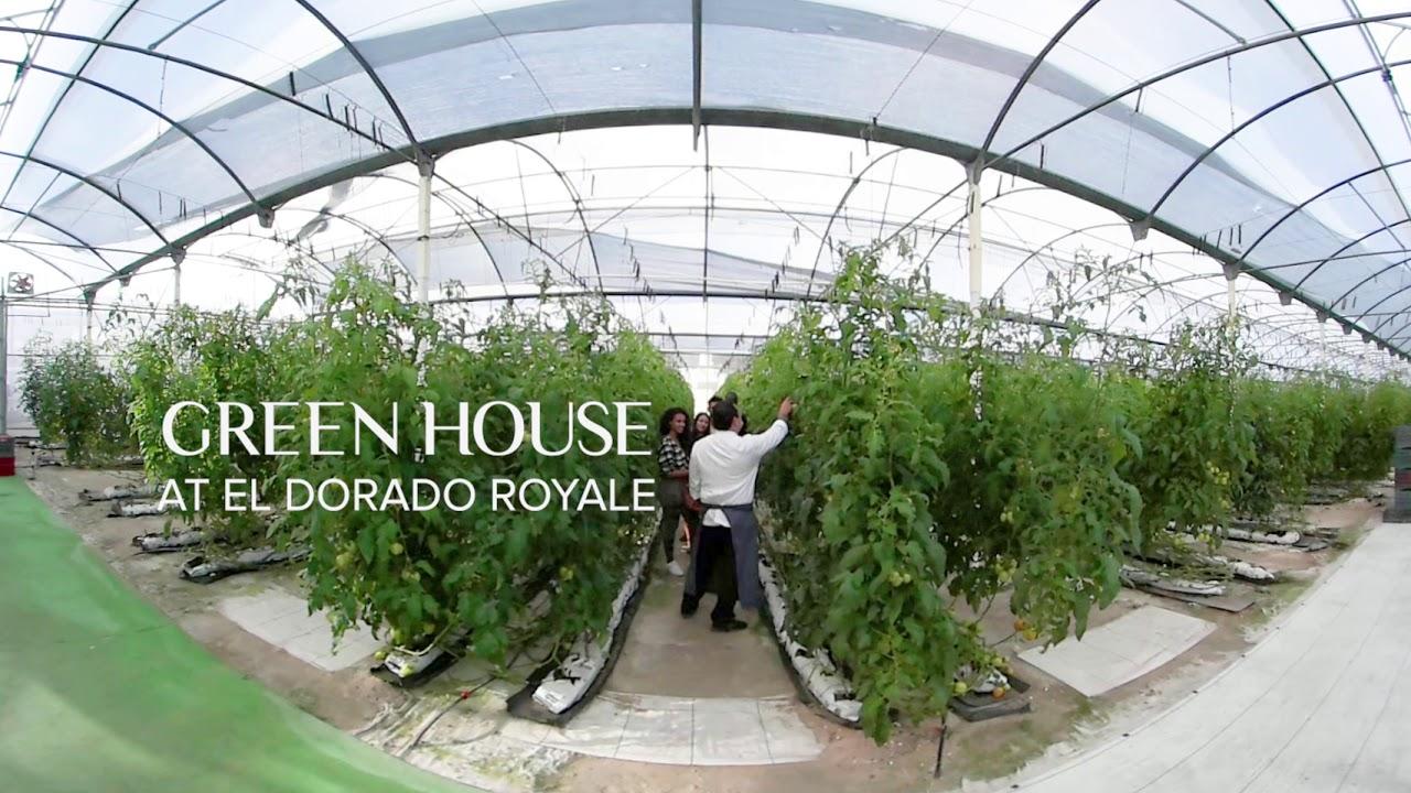El Dorado Greenhouse